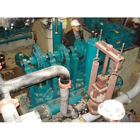 """9"""" Quadruplex Plunger Pump"""