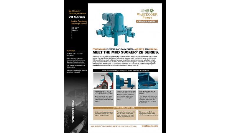 Professional Electric Diaphragm Pump